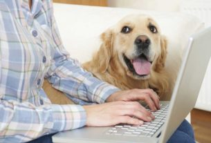 Reducing Your Pet Insurance Premium